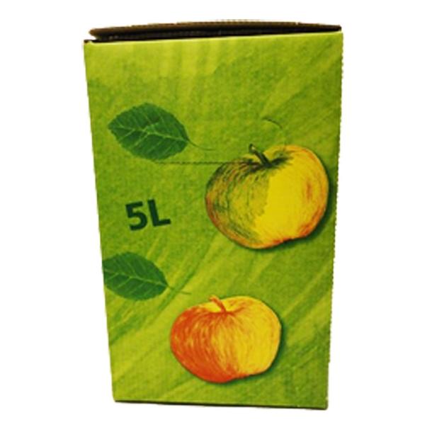 Bag-in-Box 5 Liter karton (Grøn med æblemotiv) - MIDLERTIDIG UDSOLGT